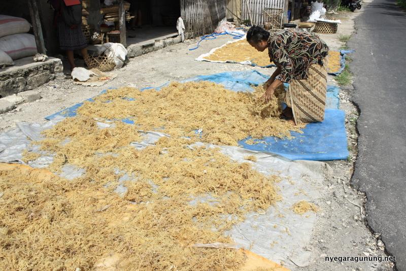 Hasil panen rumput laut yang dijemur di pinggir jalan Desa Ped