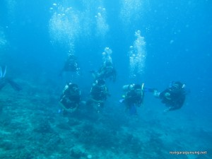 Sesi Open Water 1