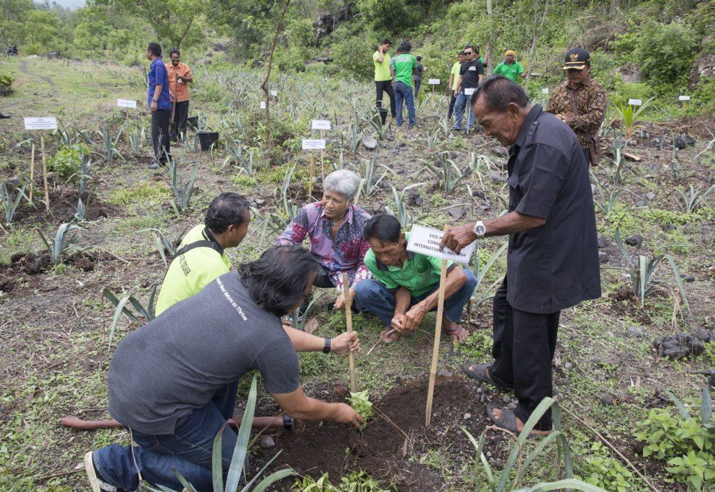 Penanaman pohon dewandaru di lokasi penanaman yang terletak di Desa Dukuh oleh Ketut Sarjana Putra bersama perwakilan Kelompok Tani Ternak Darma Kerti dan Kelompok Tani Hutan Legundi Lestari Indah yang menjadi mitra lokal dalam program reforestasi